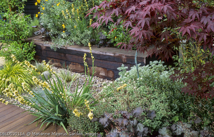 Railway sleeper raised bed, decking, pebbles, Acer palmatum 'Bloodgood', heuchera, sisyrinchium