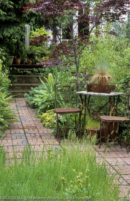 Table and chairs on brick patio, long grass meadow, Acer palmatum 'Bloodgood'