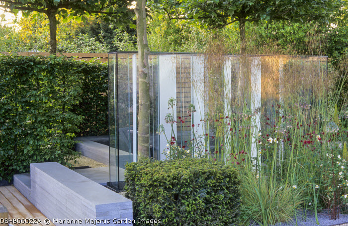 Built-in basalt bench, Stipa gigantea, clipped yew cube, glass screen concealing sunken terrace, Knautia macedonica, roses, Nectaroscordum siculum