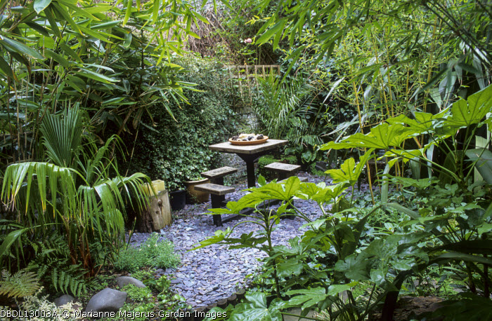 Bamboo, Fatsia japonica, palm, table and chairs on slate chippings terrace