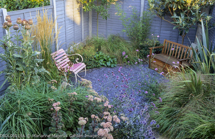 Small town garden with natural, perennial planting, grey painted larch lap fence, wooden bench, Verbena bonariensis, hylotelephium syn. sedum, artichokes, slate chippings