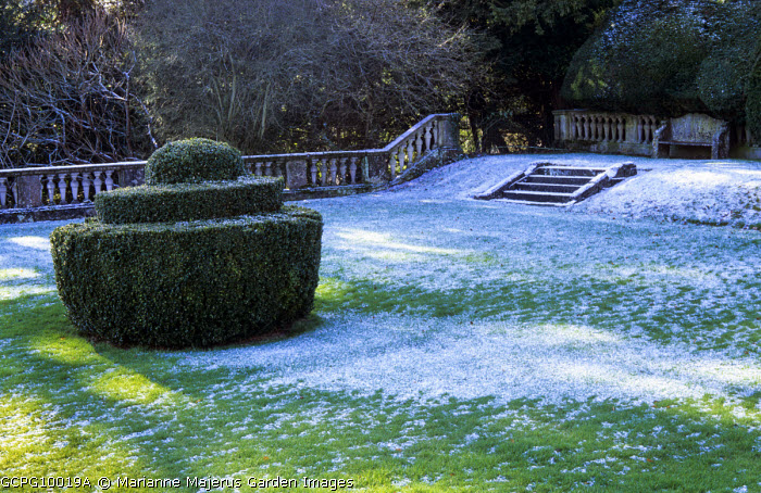 Yew topiary, stone balustrade, snow on lawn