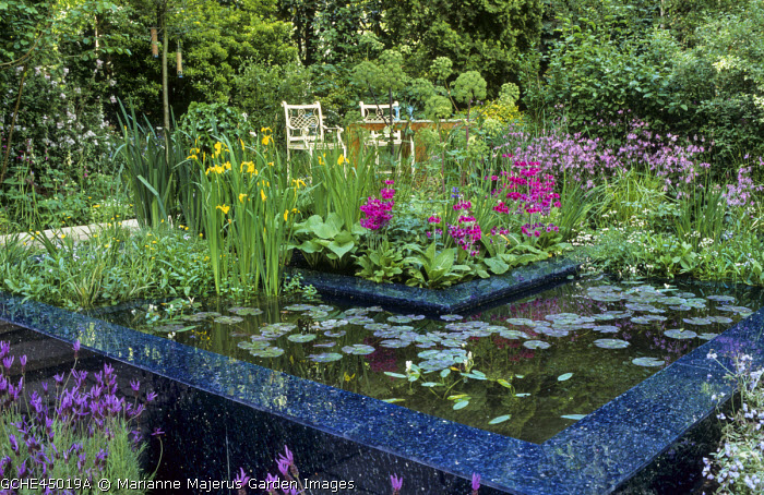 Chairs overlooking raised pond, water lilies, bog garden, Primula japonica, Angelica archangelica, Iris pseudacorus, lavender