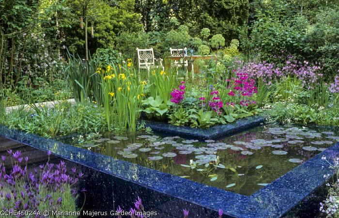 Chairs overlooking raised pond, water lilies, bog garden, Primula japonica, Angelica archangelica, Iris pseudacorus, lavender
