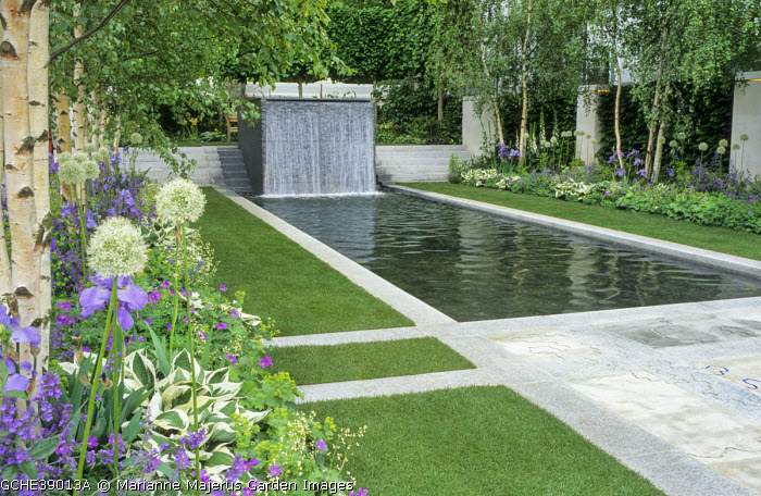 Formal rectangular pool and fountain edged with stone paving, alliums, irises, geraniums and hostas under birch trees