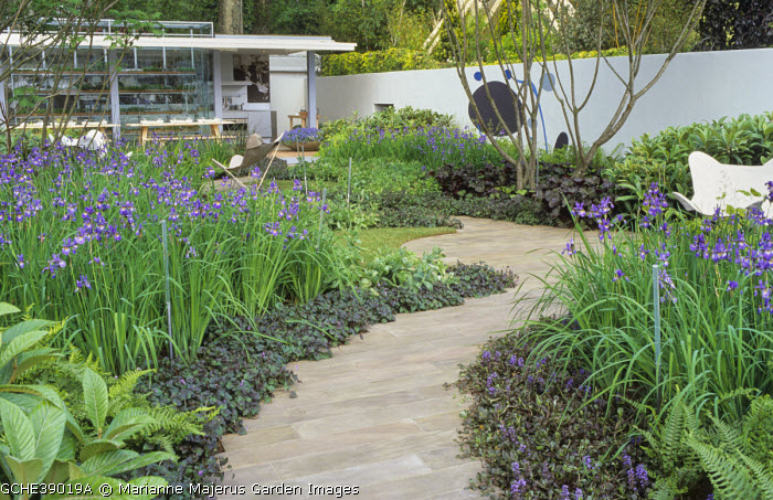 Winding stone path, Ajuga reptans, irises