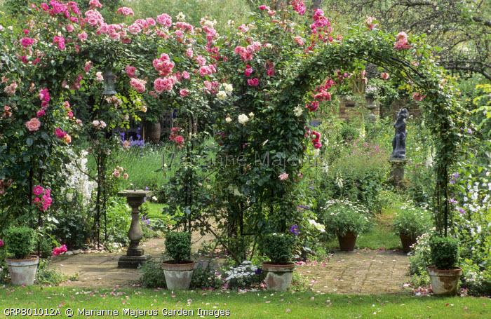 Rose arches, Rosa 'White Cockade', 'Albertine', 'Morning Jewel', 'Swan Lake', sundial, ornament