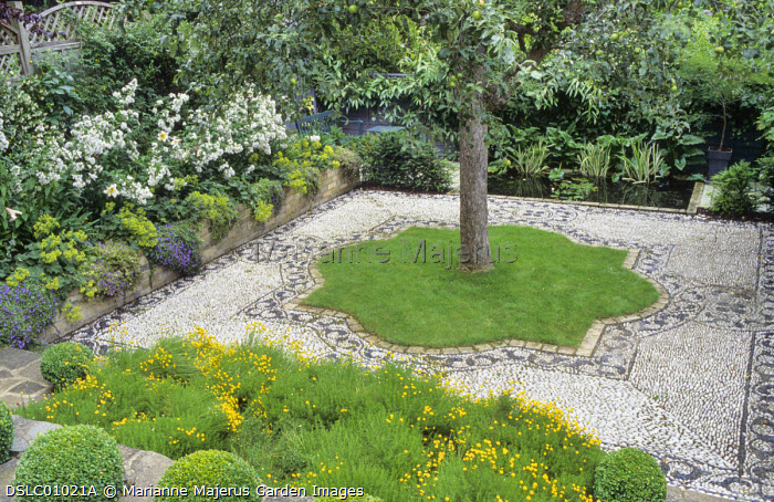 Stone paved terrace, box balls, beds with Santolina rosmarinifolia subsp. rosmarinifolia, pebble mosaic by Michael Gough, apple tree, pond