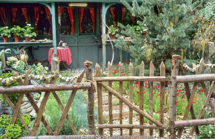 Split chestnut wooden fence, hagstones, Papaver rhoeas, Stipa gigantea