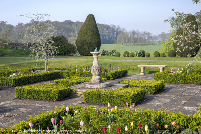Sundial in formal box-edged parterre, stone bench, tulips, Taxus baccata