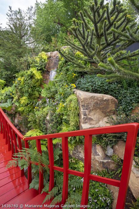 Red painted walkway bridge, waterfall, Adiantum raddianum 'Fragrantissimum', Araucaria araucana, Lophosoria quadripinnata