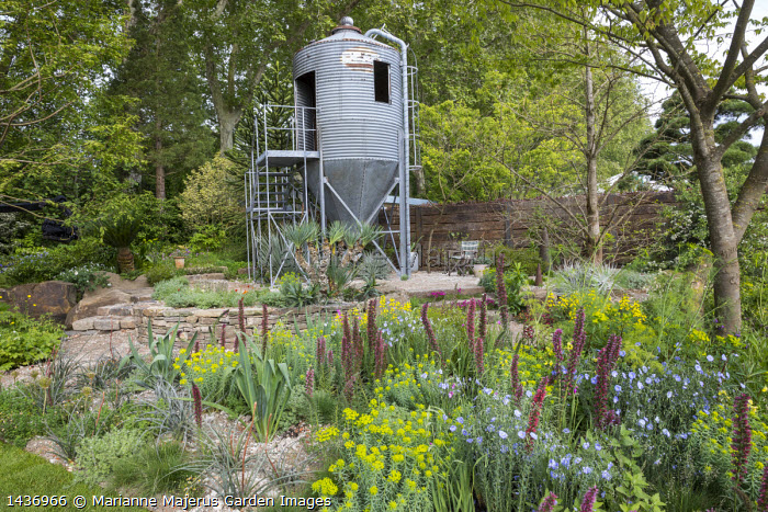 Grain silo repurposed as a design studio office, Echium russicum, Linum perenne,  Euphorbia seguieriana subsp. niciciana