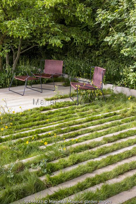 Contemporary chairs on stone and grass terrace, Iris pseudacorus, Carpinus betulus, Ranunculus acris