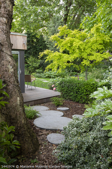 Circular stepping stone across bark chippings mulch, Fatsia japonica, yew hedge, chairs on decking by pavilion, Acer palmatum