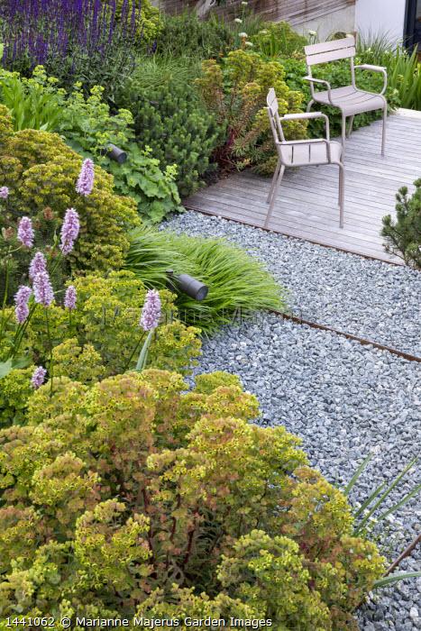 Chairs on decking, Euphorbia × martini, Persicaria bistorta 'Superba', Pinus mugo, Alchemilla mollis, Salvia nemorosa 'Caradonna', Hakonechloa macra