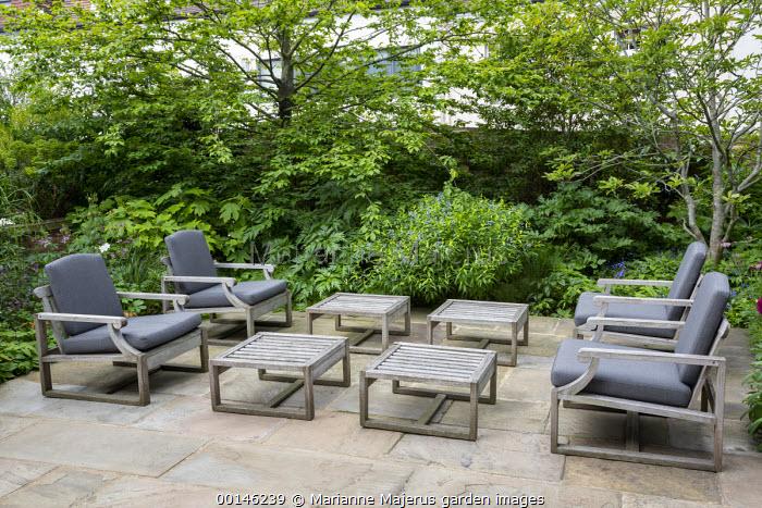 Contemporary chairs with cushions on stone terrace, Amsonia orientalis, Carpinus betulus, magnolia, Hydrangea quercifolia