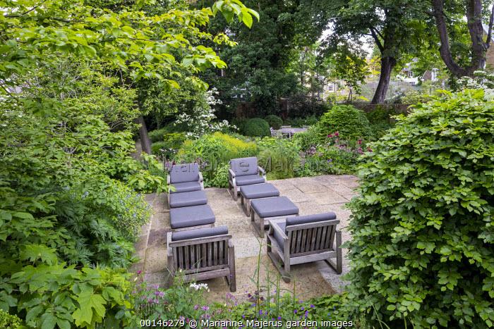 Contemporary chairs with cushions on stone terrace, large clipped Fagus sylvatica domes, astrantia, Hydrangea arborescens 'Annabelle', Hydrangea quercifolia, Euphorbia x pasteurii, Rosmarinus officinalis, Amsonia orientalis, Cornus kousa