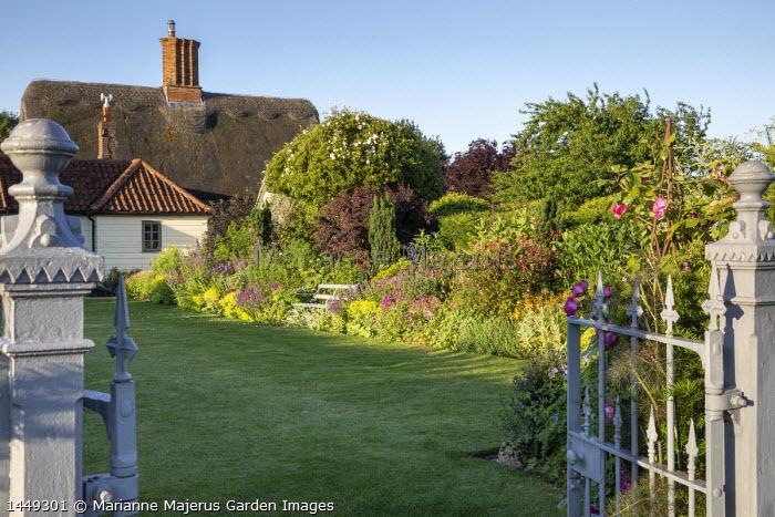 Bench in cottage garden border, Geranium psilostemon, Salvia nemorosa 'Caradonna', Alchemilla mollis, Rosa × odorata 'Mutabilis', cotinus, euphorbia, hydrangea, Taxus baccata 'Fastigiata'