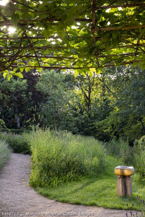 Gravel path, Centaurea nigra in wildflower meadow, bird bath by Sarah Walton, umbrella trained mulberry tree