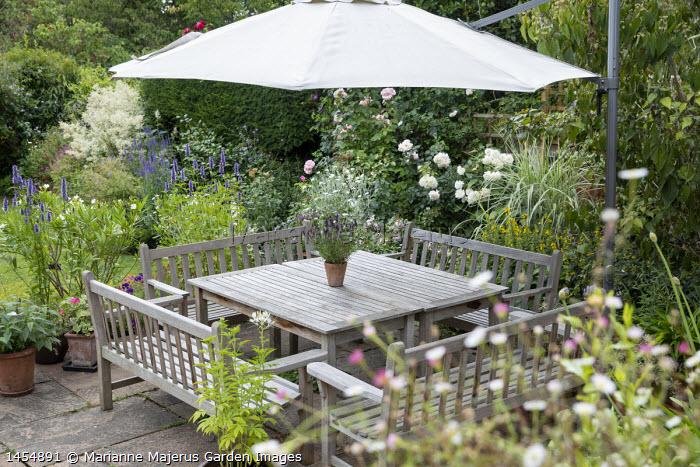 Wooden benches around table on patio, umbrella, Agastache 'Blackadder', Nerium oleander, Lychnis coronaria 'Alba', Rosa 'Alba Maxima' and 'Sharifa Asma'