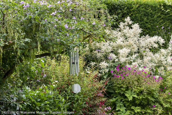 Wind chimes, Fuchsia magellanica, Geranium 'Ann Folkard', Persicaria polymorpha syn. Persicaria alpina, Clematis 'Betty Corning'