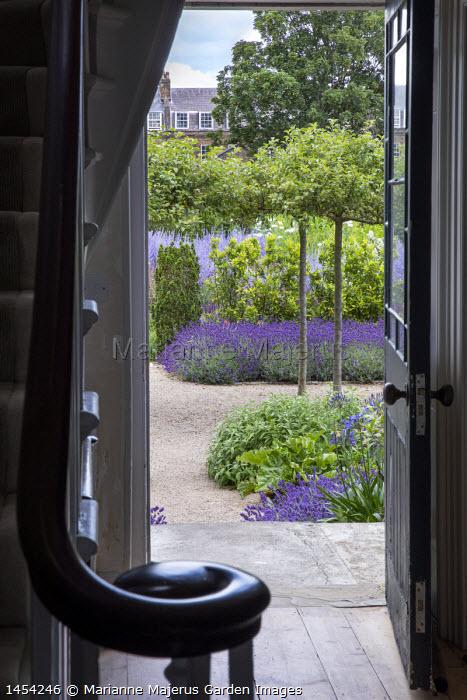 View from inside through doorway to mediterranean-style garden, umbrella-trained Malus sylvestris, Lavandula angustifolia 'Hidcote', self-binding gravel, bay hedge, Taxus baccata 'Fastigiata'