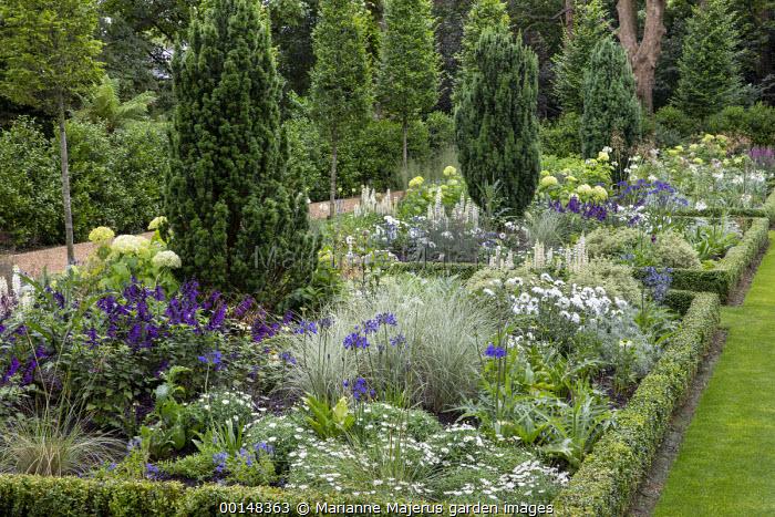 Salvia 'Amistad', lupins, agapanthus, artichokes, Miscanthus sinensis 'Morning Light', Taxus baccata 'Fastigiata', Hydrangea arborescens 'Annabelle', formal box-edged borders