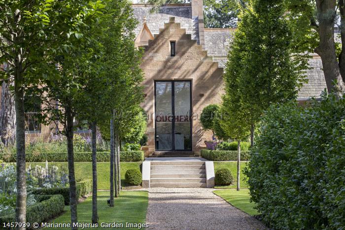 Avenue of Carpinus betulus 'Fastigiata', gravel path leading to house, stone steps