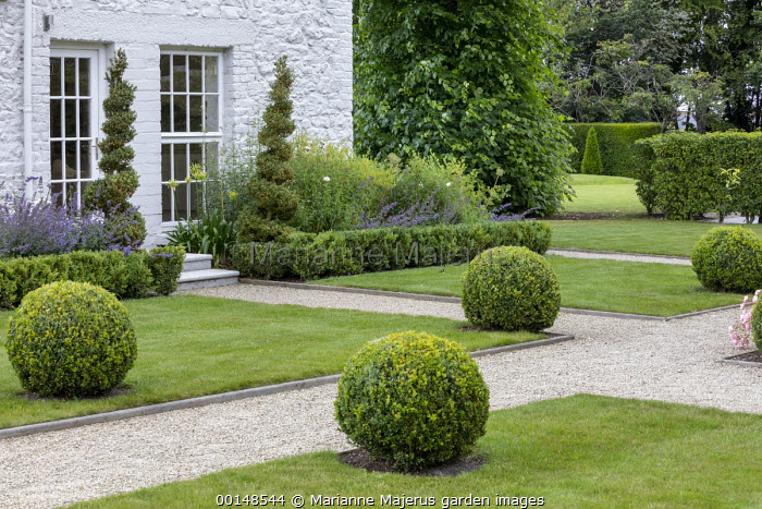 Intersection of gravel paths, clipped box balls on lawn, box spirals and low clipped hedges