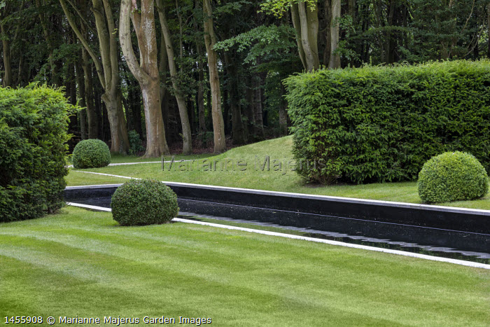Formal rectangular pond, clipped box balls, yew hedge