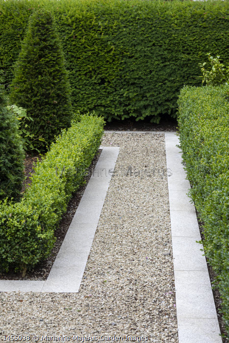 Gravel path with stone edging, low clipped Buxus sempervirens hedge, yew hedge and pyramid topiary
