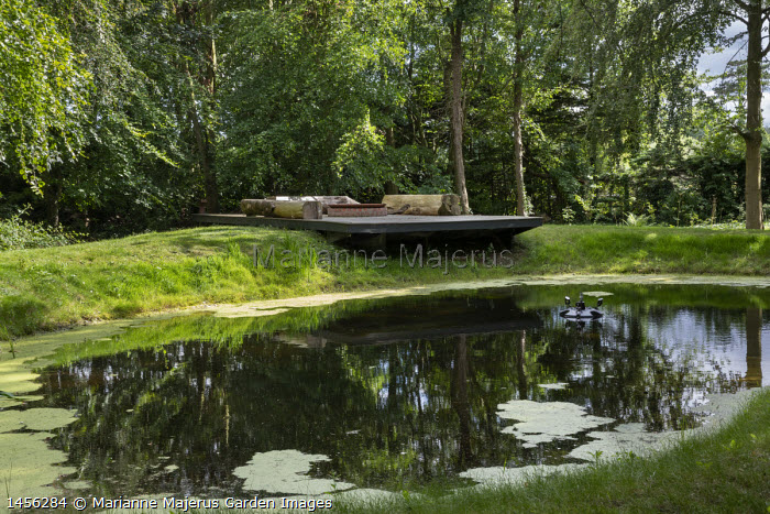 Decking over natural pond in woodland clearing, log benches