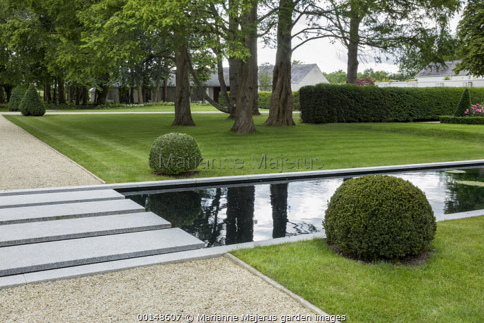 Stepping stones over formal rectangular pond, gravel path, clipped box balls