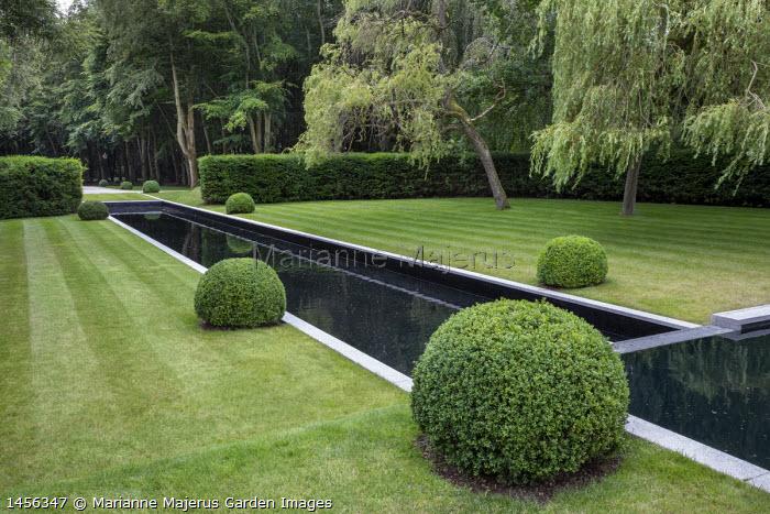 Formal rectangular pond, clipped box balls