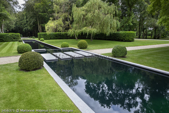 Stepping stones over formal rectangular pond, clipped box balls
