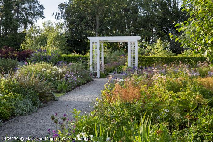 View across perennial borders, gravel path leading to trellis archway, aruncus, Filipendula ulmaria, agapanthus,