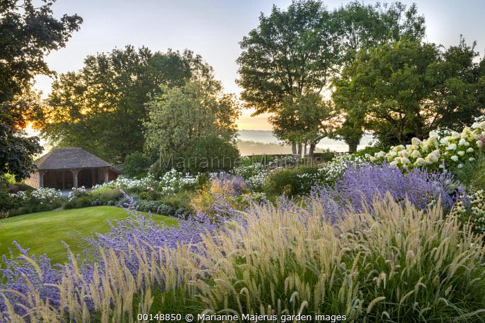 Pennisetum 'Fairy Tails', Perovskia 'Blue Spire', Hydrangea paniculata 'Little Lime', Rosa 'Iceberg'