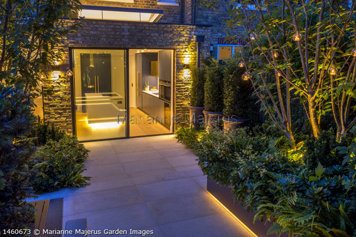 Contemporary stone patio, sliding glass doors, multi-stemmed prunus, view into kitchen inside, row of clipped yew columns in pots, hanging candle lanterns