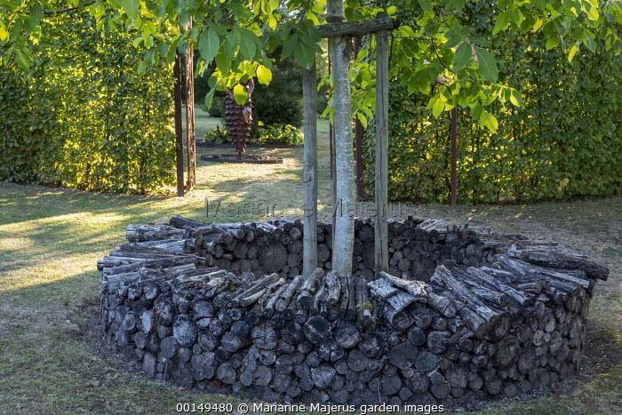 Circle of cut logs around tree