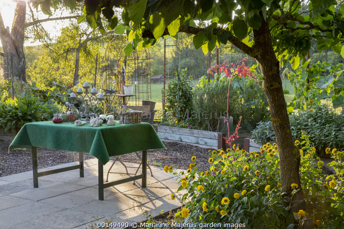 Herb garden, sculptures on table on stone patio