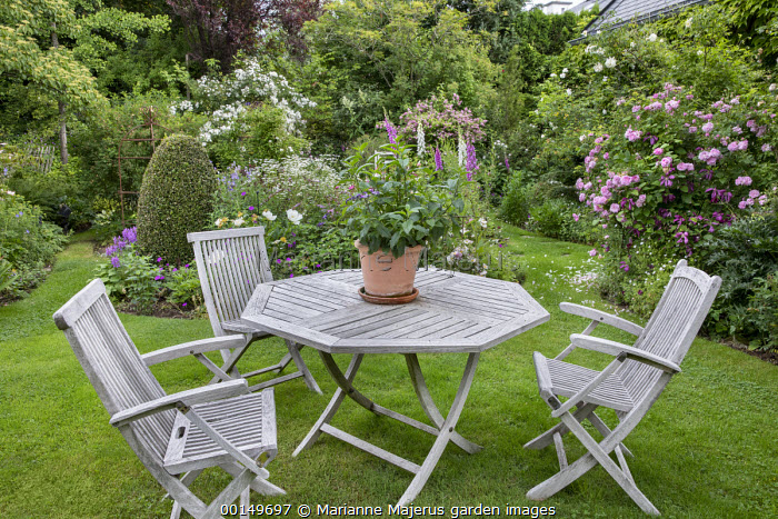 Table and chairs on lawn in rose garden, foxgloves