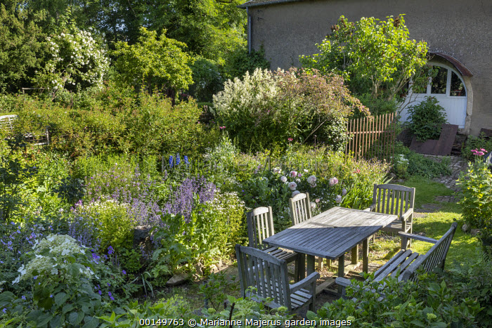 Wooden table and chairs, geranium, peonies, Persicaria polymorpha, nepeta