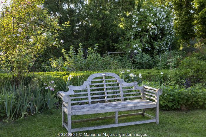 Wooden Lutyens bench on lawn, irises, roses