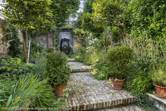 Brick path leading to shell water fountain in enclosed town garden, Hakonechloa macra, Buxus sempervirens in containers, Miscanthus nepalensis, Anemone x hybrida 'Honorine Jobert', pleached hornbeam screens