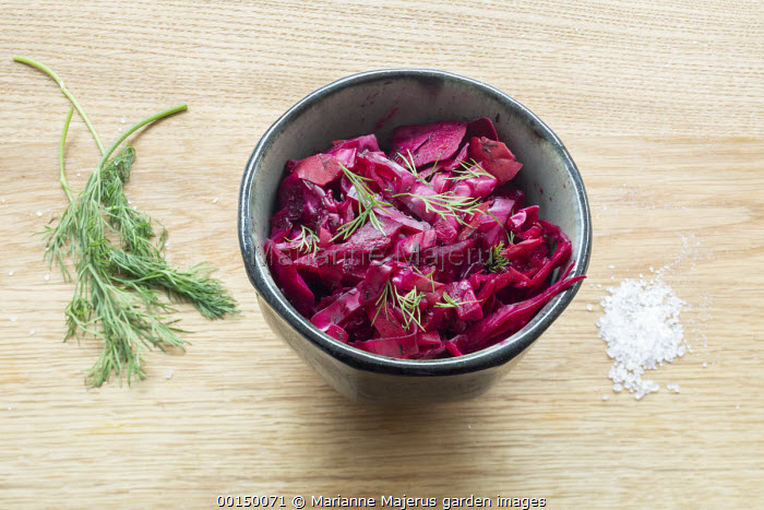 Sauerkraut in bowl, dill