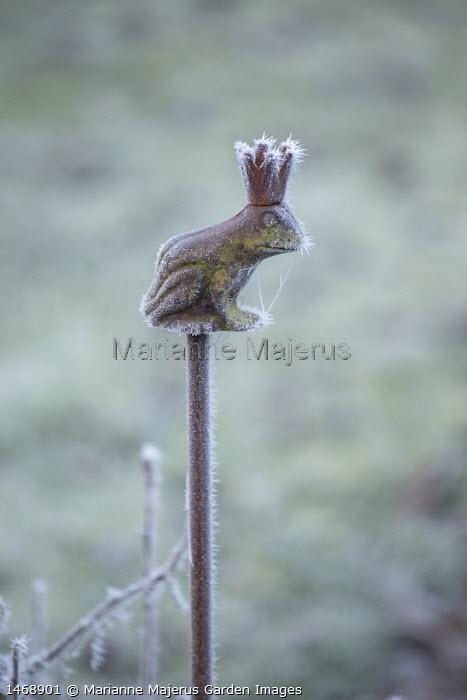 Metal frog plant stake