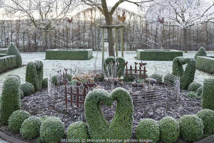 Circular border with metal edging, metal bird and fence ornaments in border, clipped Buxus sempervirens hearts and balls