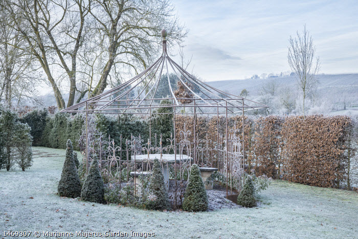 View across frosty lawn to metal pergola, hornbeam hedge