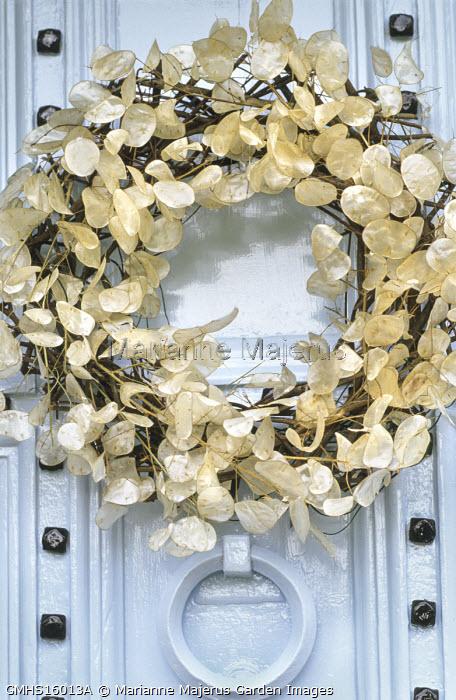 Wreath of honesty seedheads on front door