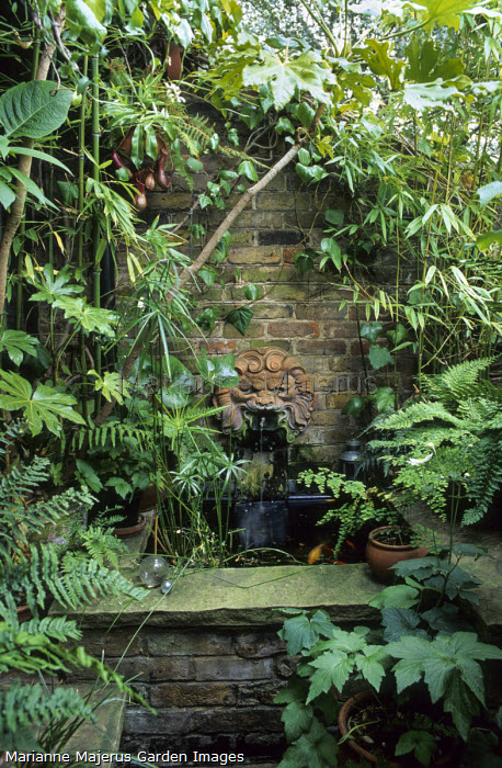 Raised pond in shady corner, papyrus, terracotta mask wall fountain, bamboo, ferns, nepenthes
